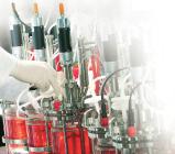 Новинка | Набор для определения микоплазм Microsart AMP Mycoplasma RT-PCR