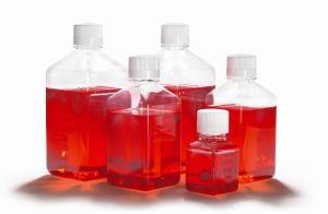 Среды для культивирования мезенхимальных стволовых клеток